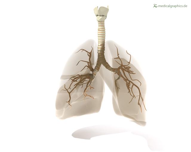 COPD – wenn sie sich verschlechtert