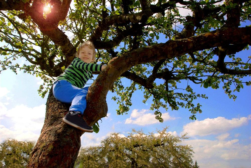 Doose-Syndrom – eine seltene Form der kindlichen Epilepsie